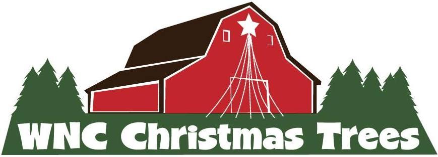Christmas Tree Farm Asheville Nc.Wnc Landscaping Service Professional Landscape Design